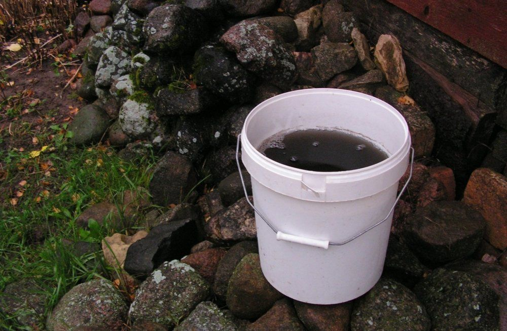 В Естонії пройшов чорний дощ / lugeja foto, Delfi Rahva Hääl