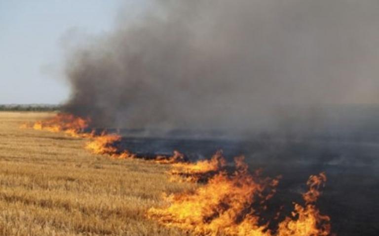 В Украине сохраняется пожарная опасность / volyn24.com
