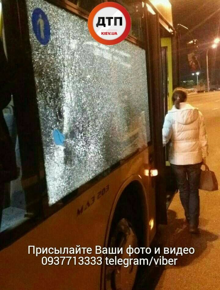 Невідомі розбили скло автобуса / фото dtp.kiev.ua