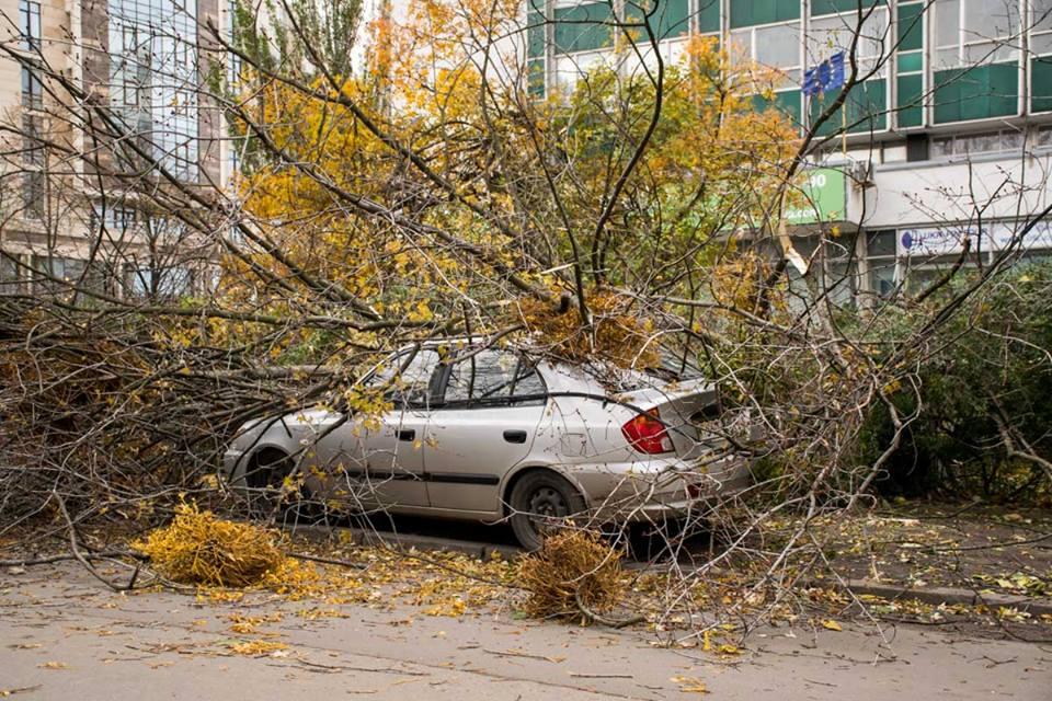 В Киеве ожидаются порывы ветра / фото informator.ua