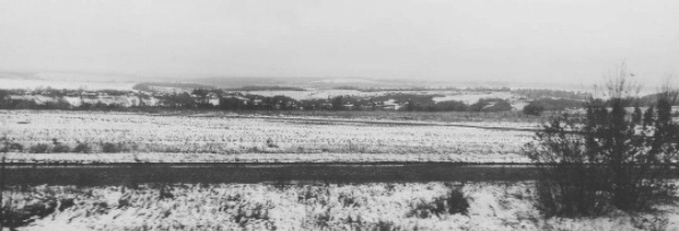 В Харькове и области выпал первый снег (фото, видео)