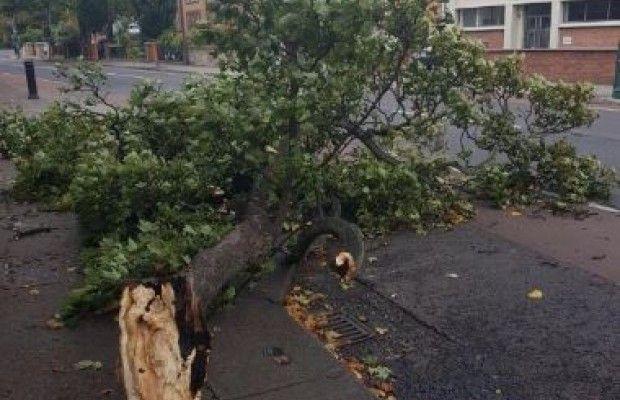 Ураган «Офелія» обрушився на Ірландію: стало відомо про перші жертви