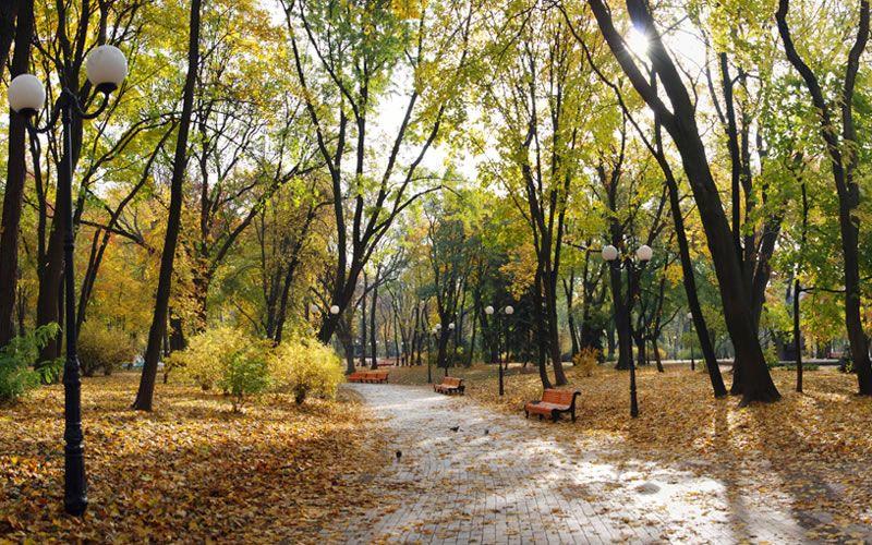 Завтра в Украине похолодает / the-city.kiev