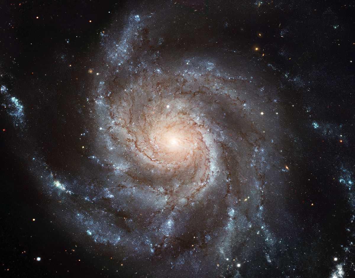 Названа древнейшая из известных ученым спиральных галактик / фото naked-science.ru