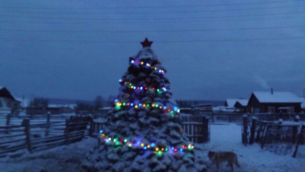 Пенсионер из Якутии слепил двухметровую елку из навоза  / фото yakutiamedia.ru