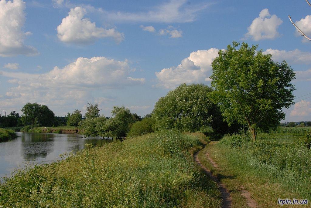 Ірпінь - це наочний приклад тієї ситуації, яка відбувається з усіма водоймами України / фото irpin.in.ua