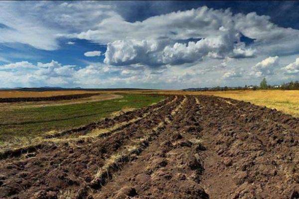 Стали известны результаты инвентаризации земель на Житомирщине / фото oda.zt.gov.ua