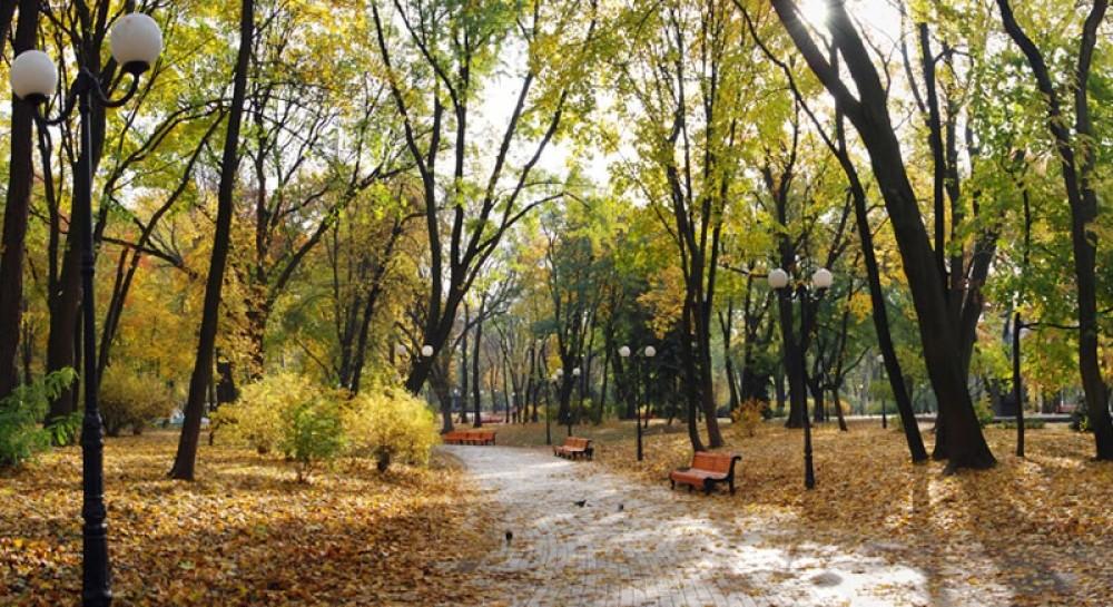 У Києві в парку виявили повішеного чоловіка (5.57 24) 62d444708ae30
