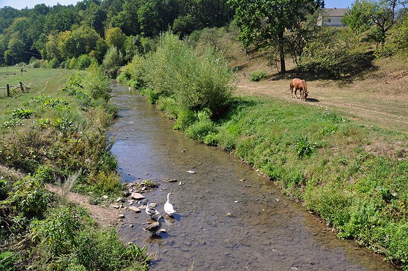 У Тернопільській області нараховується майже 900 водних об'єктів, при цьому за угодами експлуатуються в межах 400 / фото wikipedia.org