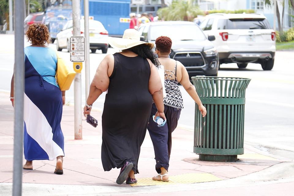 Ученые пересмотрели причину массового ожирения / фото pixabay.com