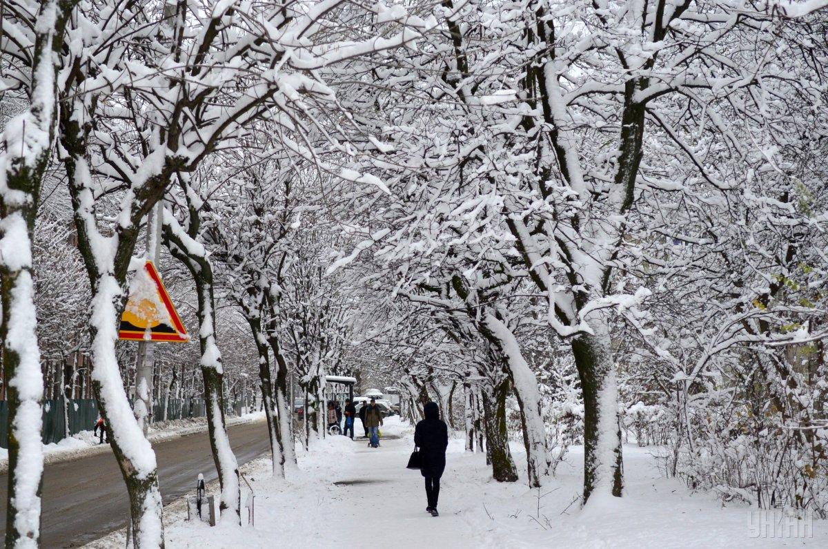 У Львів прийшла зима / фото УНІАН