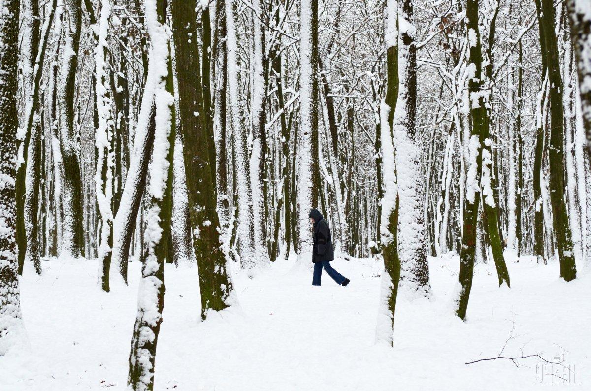 У снігових заметах, виявлено перекинуті сани, якими батько і син їхали до села / фото УНИАН