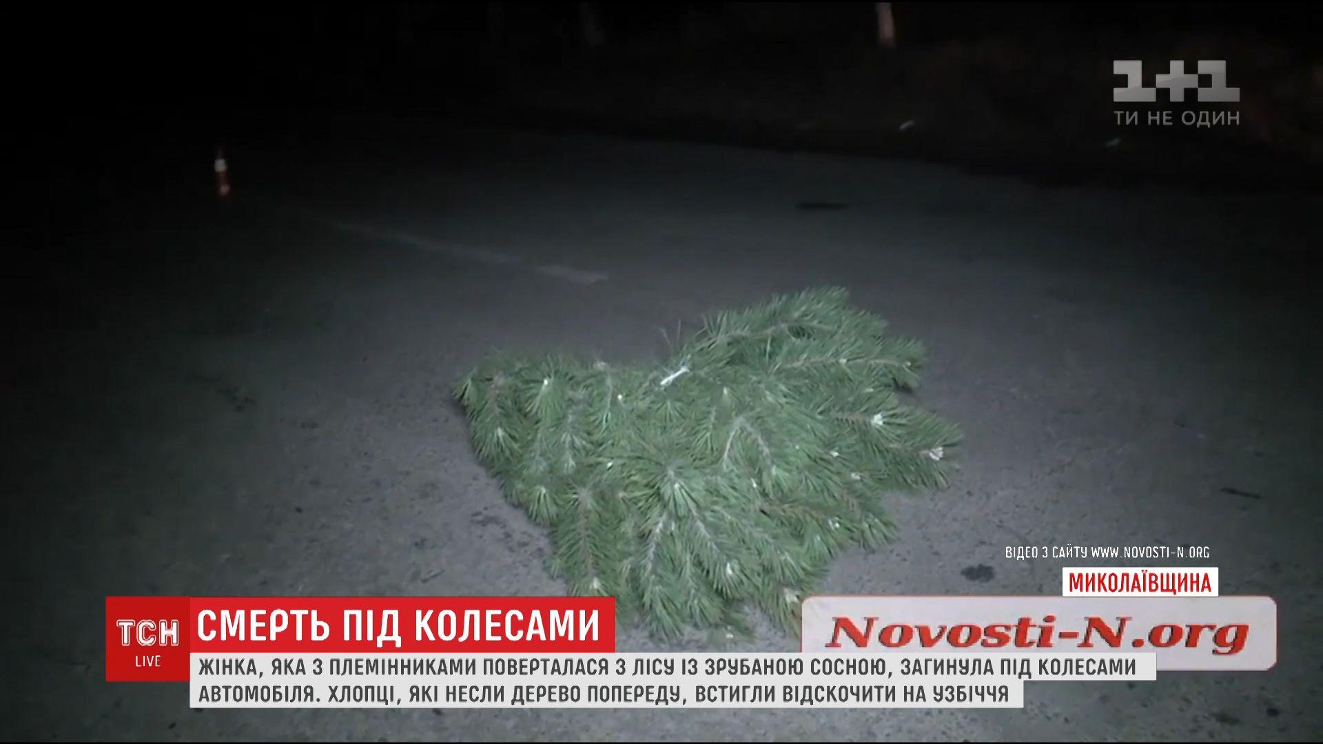 Женщину насмерть сбил автомобиль, когда она несла украденную новогоднюю сосну