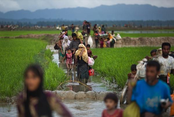 Мусульман рохінджа переселять на безлюдний острів / islam-today.ru