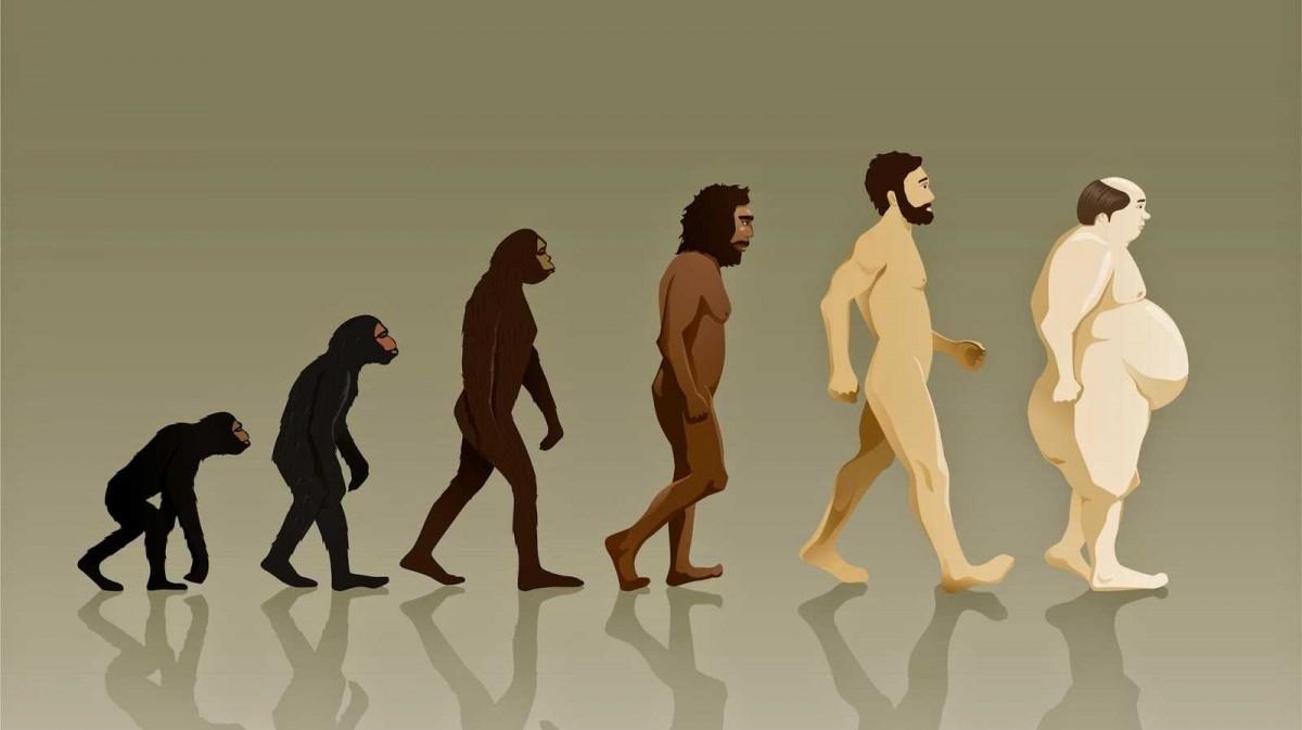 Похоже, что человечество уже выжало из своей природы максимум возможного / фото naked-science.ru