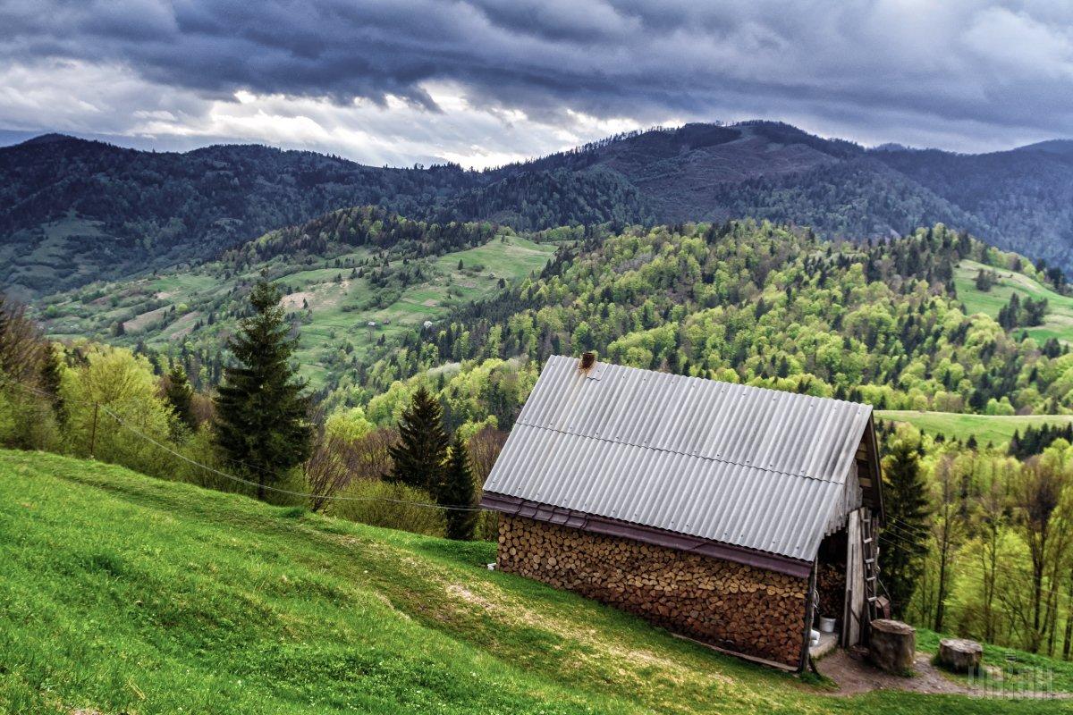 Дом на склоне горы в Карпатах / фото УНИАН