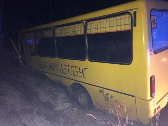 БМВ протаранил ученический автобус сдетьми под Житомиром