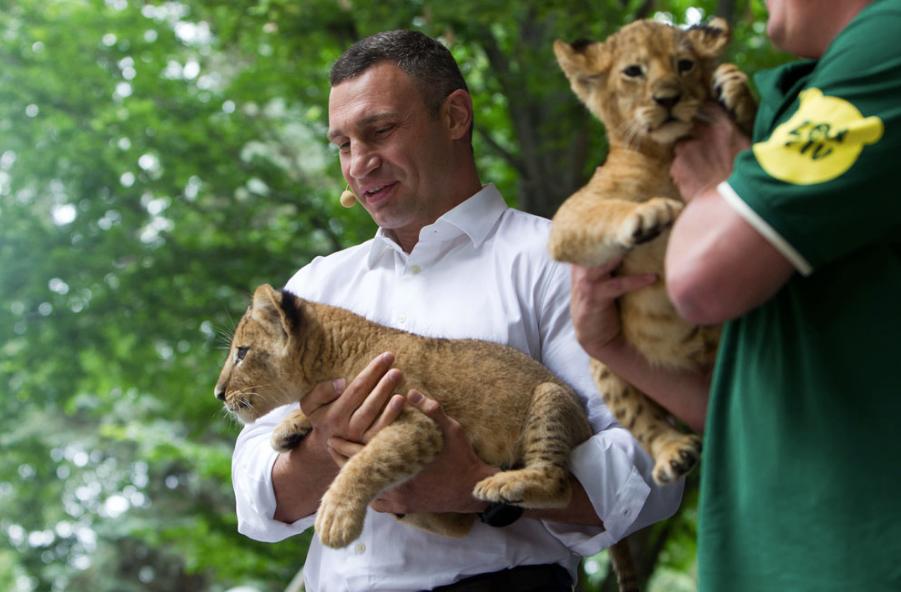 Мер нагадав, що у 2007-му році Київський зоопарк виключили з Європейської асоціації зоопарків світу, бо він не відповідав критеріям утримання тварин / kyivcity.gov.ua