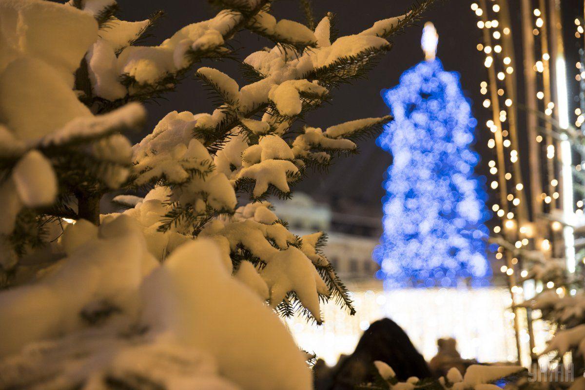 На дне карьера елка будет светить несколько дней \ УНИАН