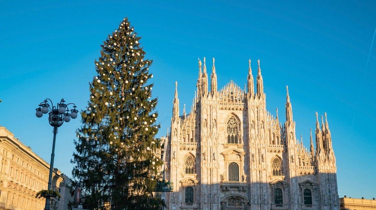 В Италии мигрант попытался снять крест с рождественской ели / sib-catholic.ru