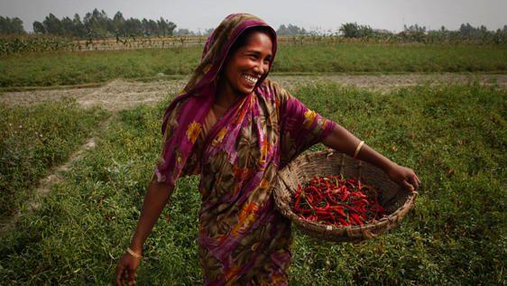 Імам виніс фетву про неприпустимість роботи жінок у сфері сільського господарства / hurriyetdailynews.com