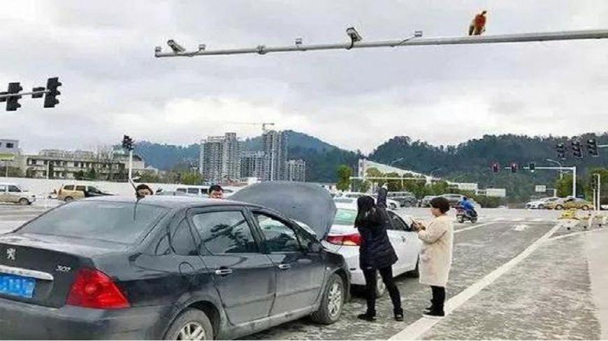 Обезьяна залезла на металлическую опору над дорогой / фото tvbs.com.tw