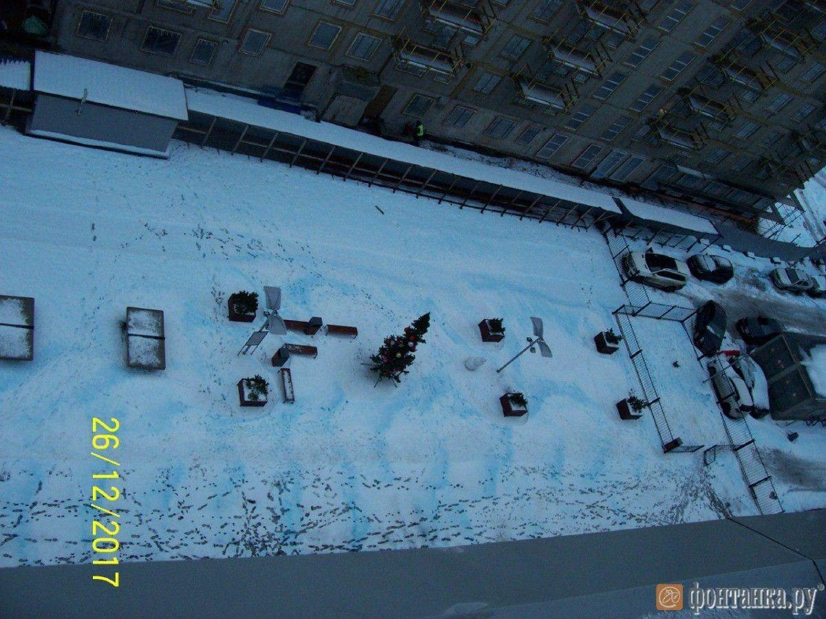 В Петербурге жаловались на синий снег / фото Фонтанка