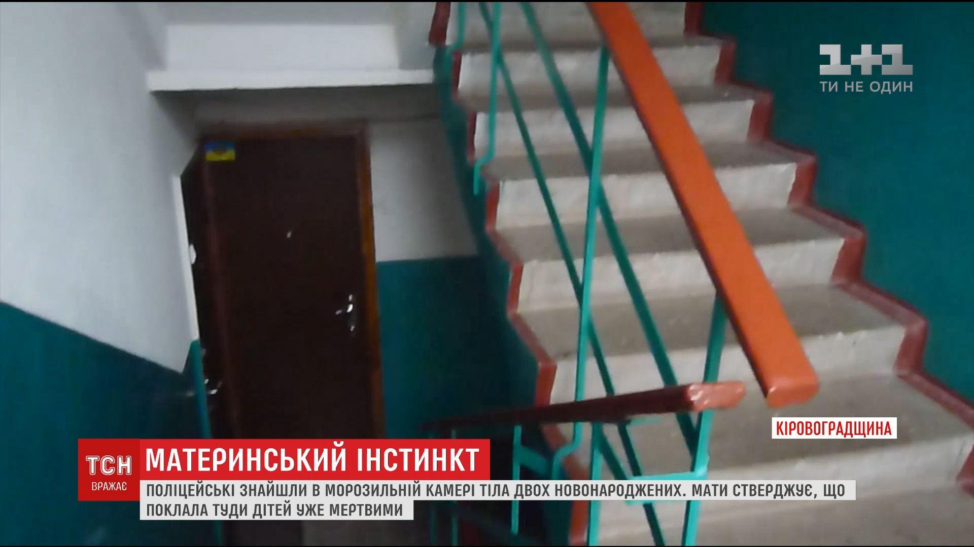 На Кировоградщине полиция нашла в морозилке роженицы тела новорожденных /