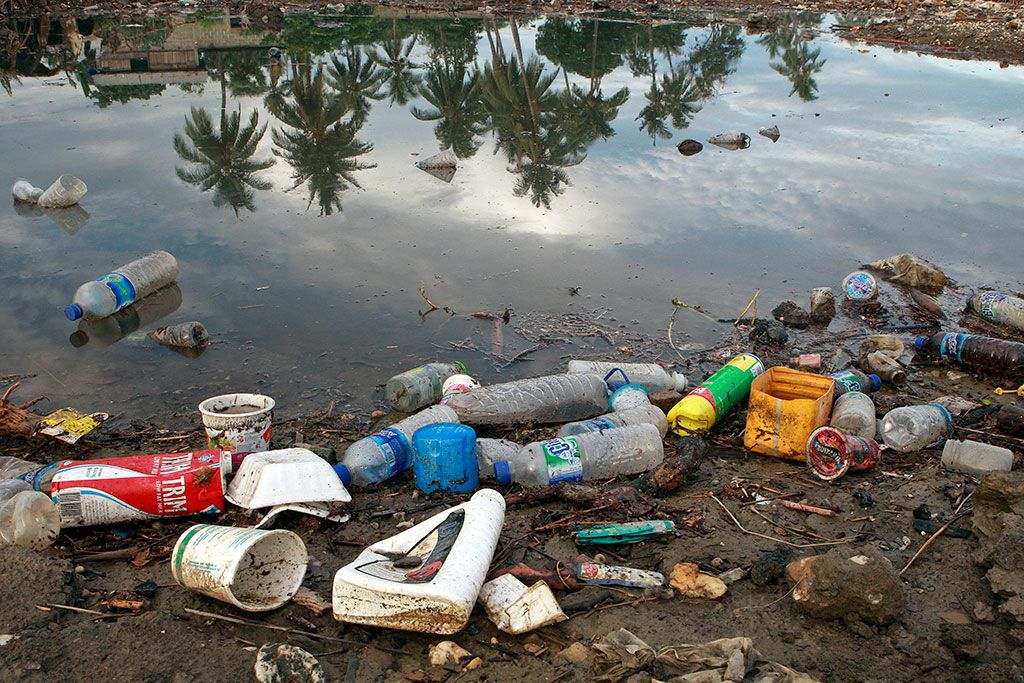 Здоров'я людей пов'язано з навколишнім середовищем / Фото: ООН