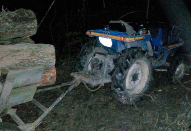 На Житомирщине полиция расследует кражу древесины / zt.npu.gov.ua