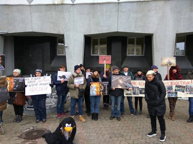 У Дніпрі пройшов мітинг на захист тварин у цирках / скрін відео
