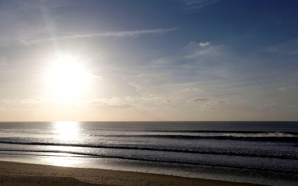 Падіння рівня кисню в морській воді масово вб'є фауну