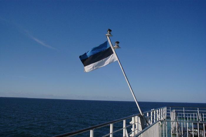 В Естонії заявили, щшо мають проблему напливу мігрантів з України / фото fb.ru