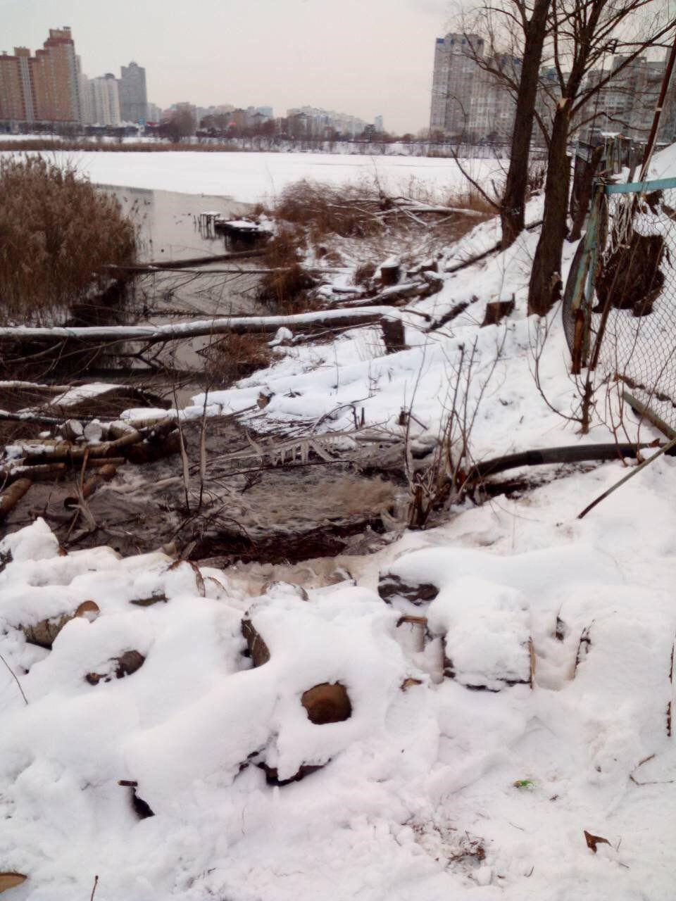 Температура воды в месте сброса загрязненных вод достигает +11 ºС / фото пресс-служба Госрыбагентства