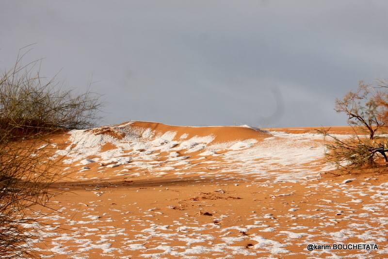 У пустелі Сахара випав сніг / фото Carim Bouchetata