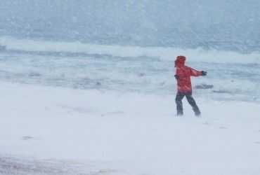 Синоптики предупреждают о мокром снеге и сильном ветре на юге и востоке Украины