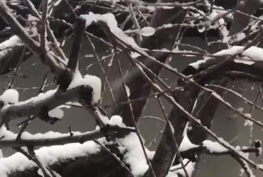 В Измаиле практически восстановили электро-, водо - и теплоснабжение - ГСЧС (видео)