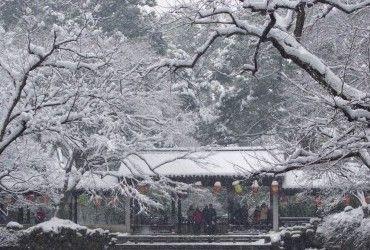 Північний схід Китаю постраждав від сильного снігопаду