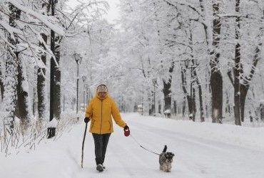 Погода на 19 февраля: начинает холодать и пол-Украины засыплет снегом