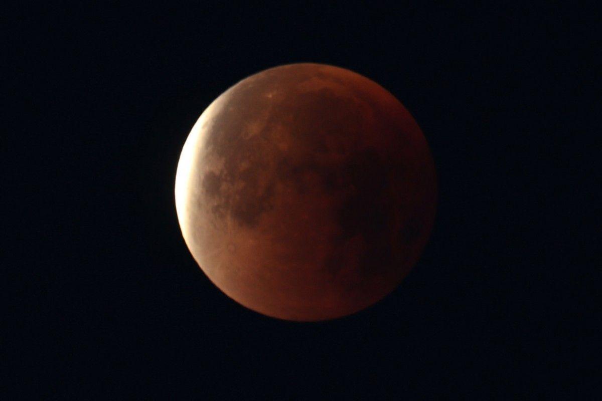 На Місяць відправлять капсулу з інформацією про досягнення людства / REUTERS