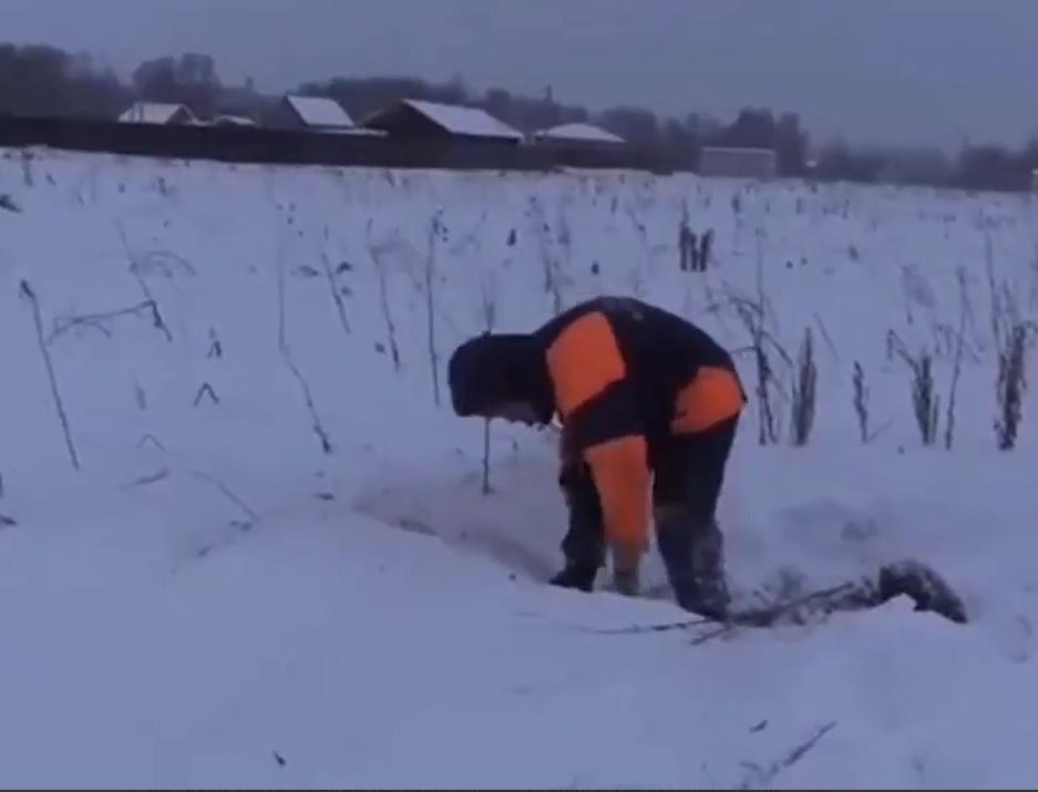 Обломки найдены недалеко от жилого сектора / Скриншот видео Mush