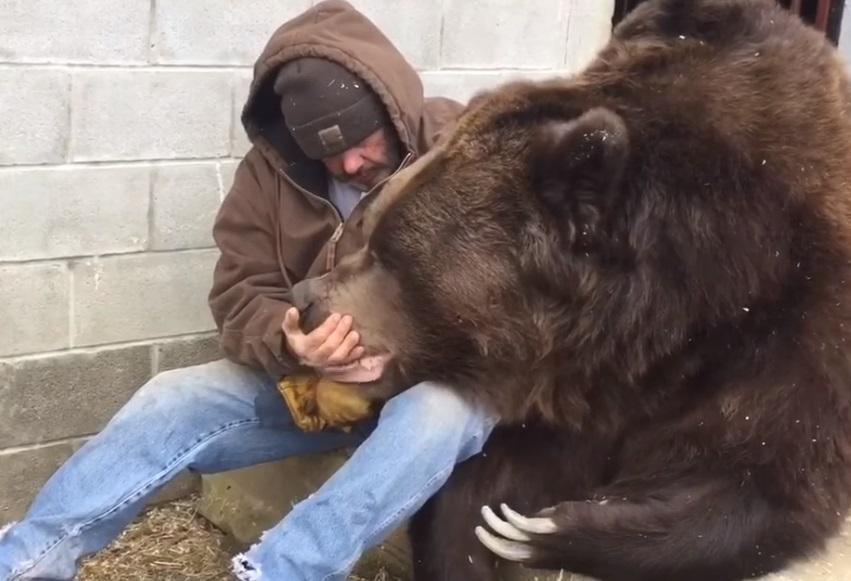 Мужчина дружит с медведем 23 года / Скриншот