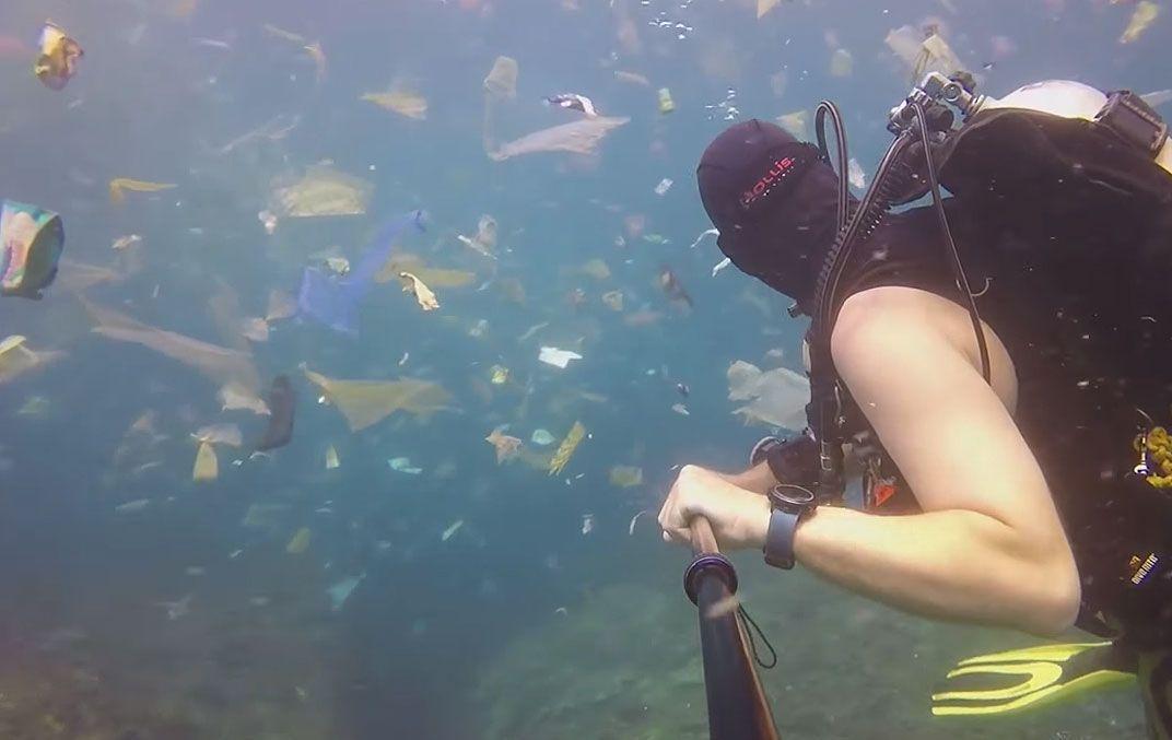 Вместо скоплений рыбы, медуз и других жителей моря плавает мусор / скриншот Guardian News/YouTube