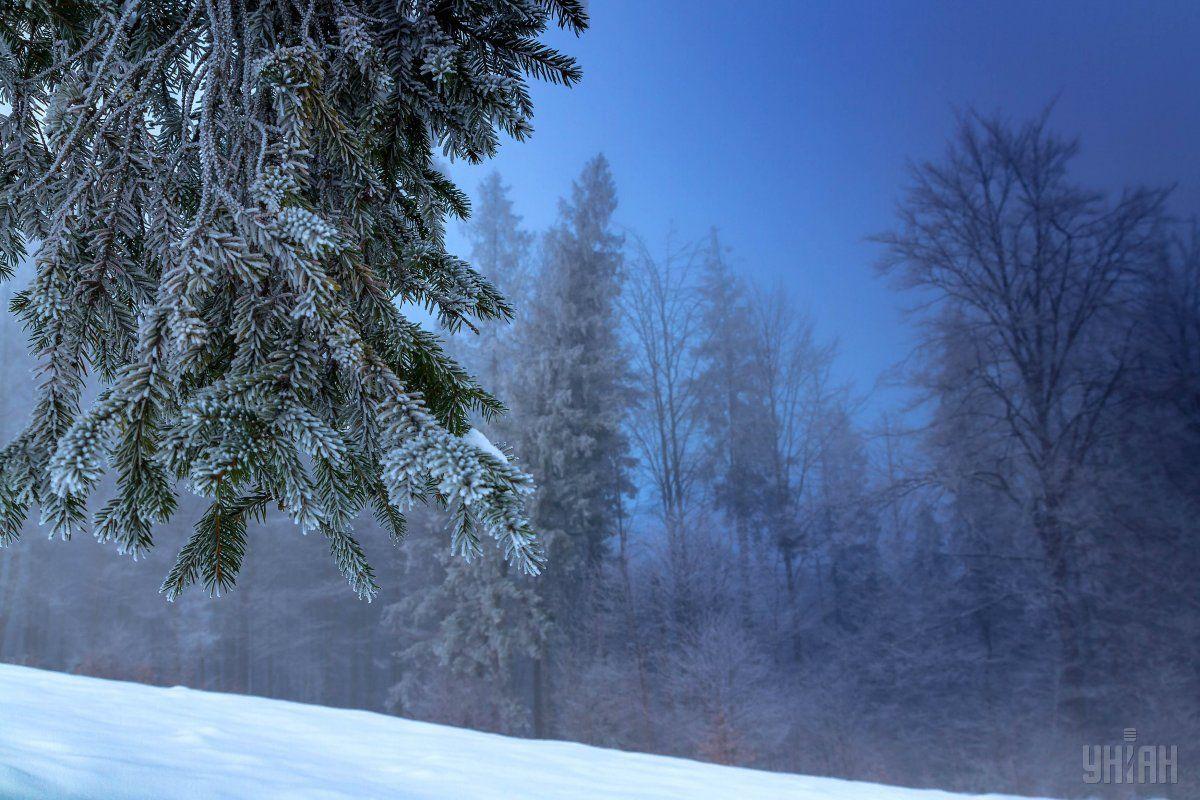 Новый год в Украине будет морозным и снежным / фото УНИАН