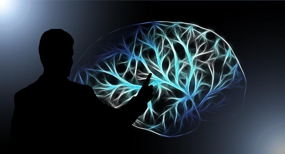 Названы главные причины старения мозга / фото pixabay.com