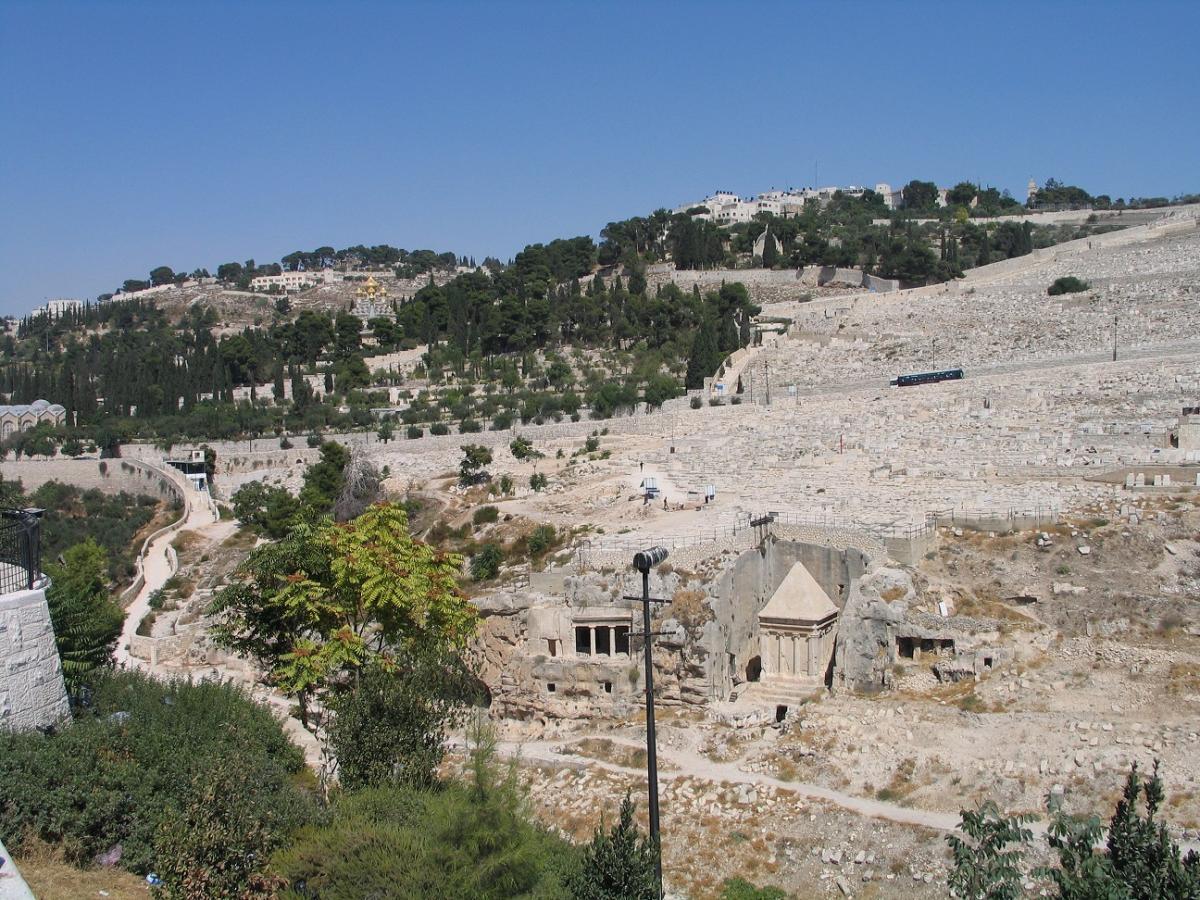 Вид на Масличную гору и последний путь от Иисуса