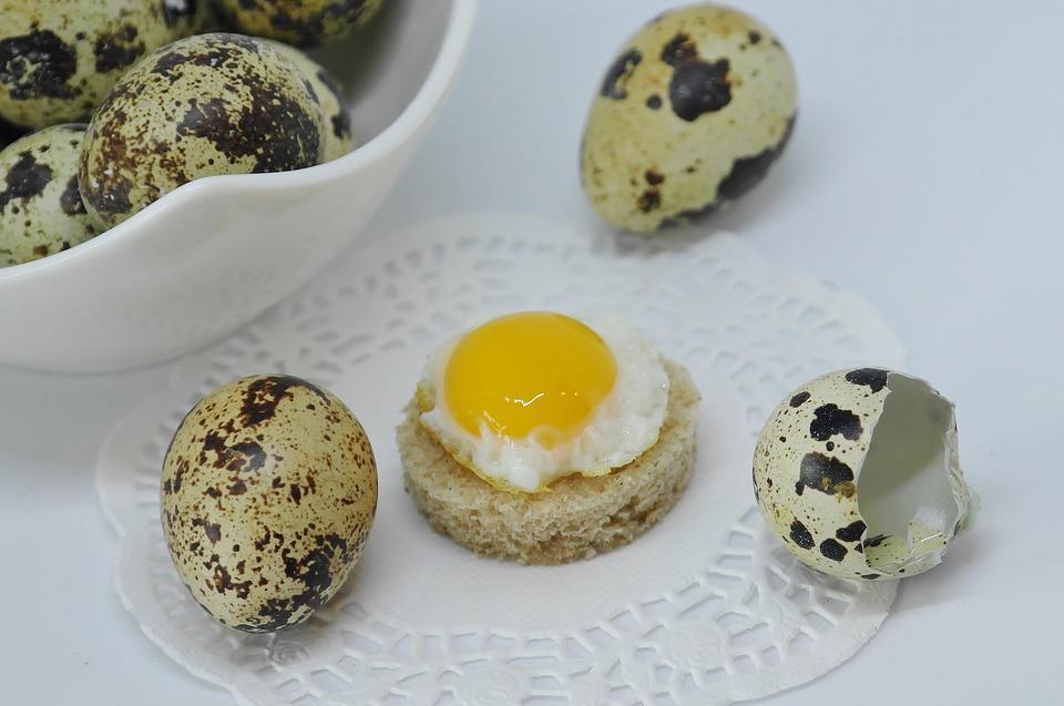 Эксперт советует есть яйца на завтрак / фото pixabay.com