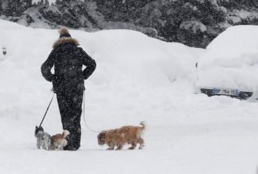 В Украине завтра пройдут снегопады, на западе ночью до -12° (видеопрогноз)