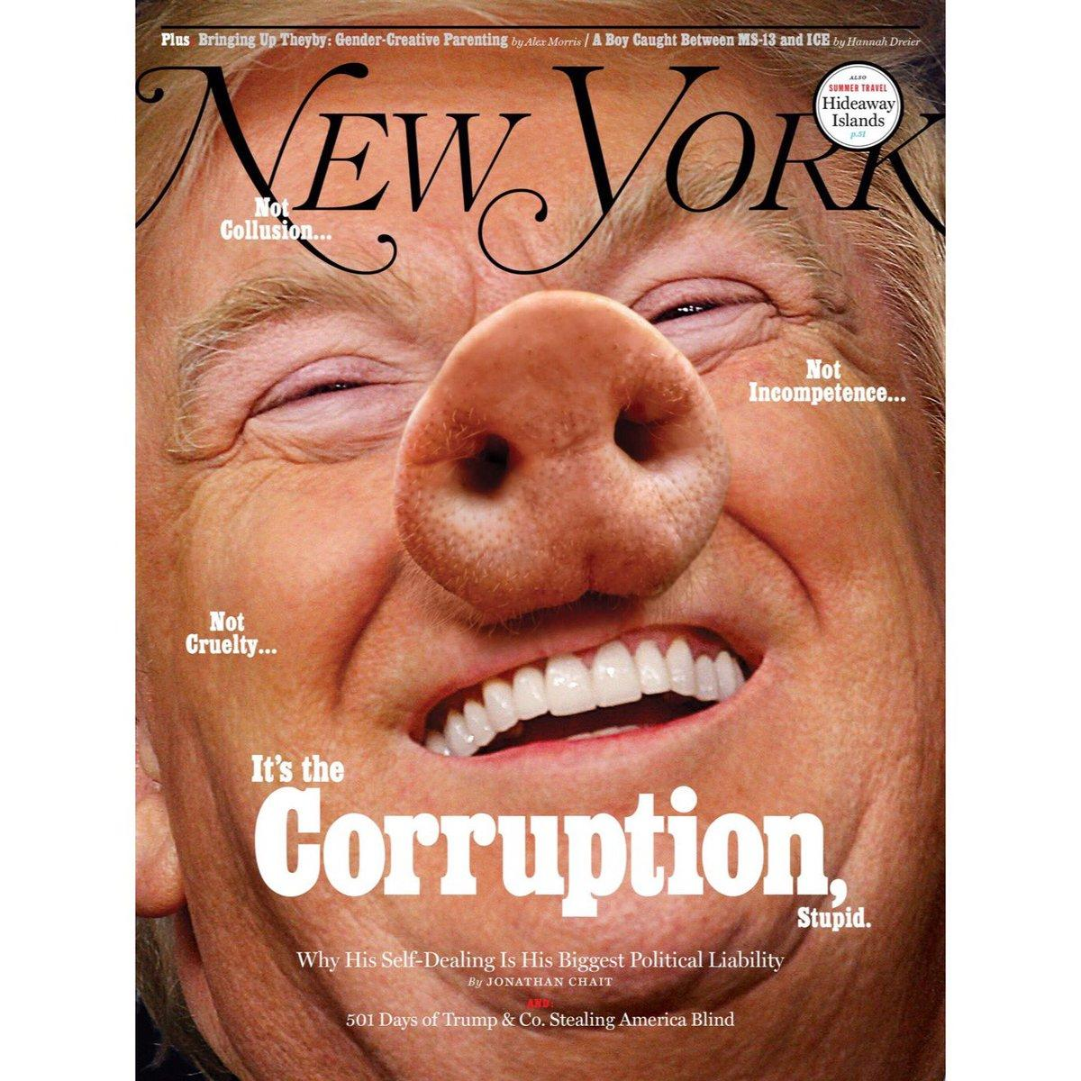Трампа поместили на обложку, приделав свиное рыло / NYM