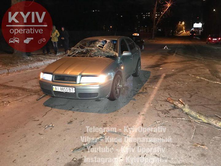 Ураган в Києві пошкодив автомобілі / kyivoperativ.info